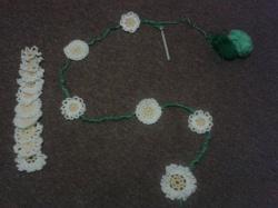 daisy photo 3