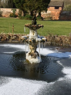 Frozen fountain at Denman