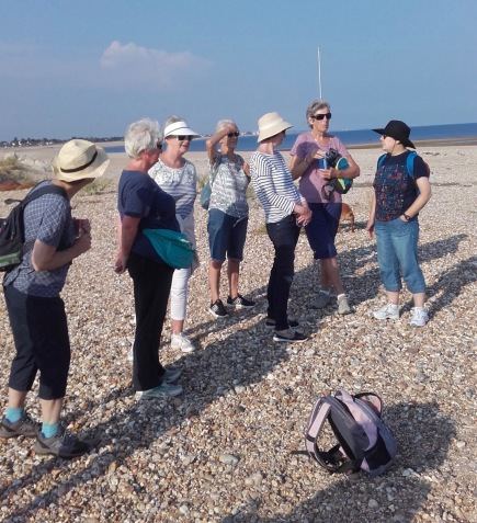Aldwick to Pagham coast chatter