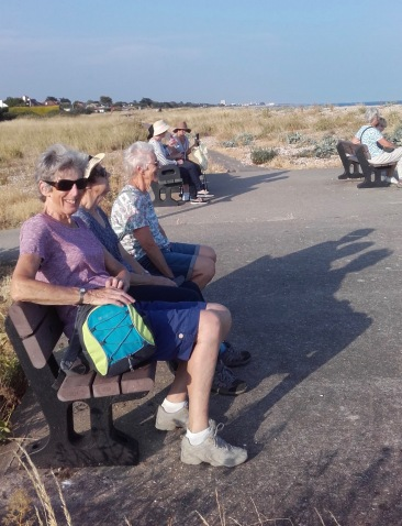 Aldwick to Pagham coast taking a rest
